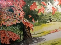 Blarney Woodland Faerie